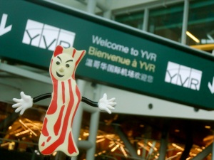 Mister Bacon discovers YVR